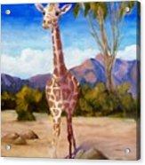 Geoffrey Giraffe Acrylic Print
