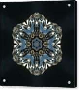 Geometric Glass Reflection Acrylic Print