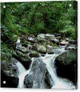 Georgia Mountian Stream Acrylic Print