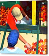Georgia Peaches Acrylic Print