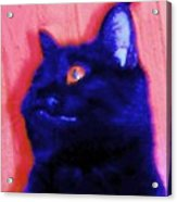 Gepetto The Cat Godzilla Acrylic Print
