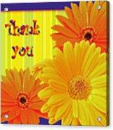 Gerbera Daisy Thank You Card Acrylic Print
