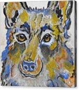 German Shepherd Painting Acrylic Print