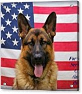 German Shepherd - U.s.a. - Text Acrylic Print