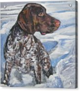German Shorthaired Pointer In The Snowdrift Acrylic Print