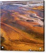 Geyser Basin Springs 7 Acrylic Print