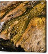 Geyser Basin Springs Acrylic Print