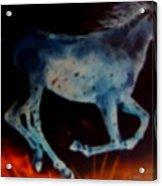 Ghost Horse Acrylic Print