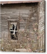 Ghostly Abndoned House Acrylic Print