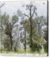 Ghostly Images Acrylic Print