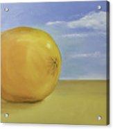 Giant Orange On The Beach  Acrylic Print
