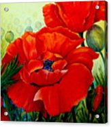 Giant Poppies 3 Acrylic Print