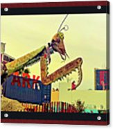 Giant Preying Mantis 1 Acrylic Print