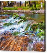 Giant Springs 2 Acrylic Print