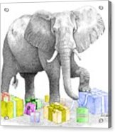 Gift Wrapping Elephant Acrylic Print