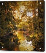 Gilded Acrylic Print