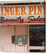 Ginger Pink Acrylic Print