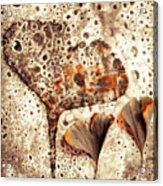Ginko Acrylic Print