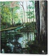 Ginny Springs Acrylic Print