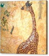 Giraffe   Sold  Acrylic Print