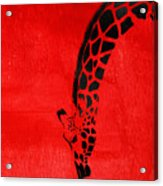 Giraffe Animal Decorative Red Wall Poster 3 - By  Diana Van Acrylic Print