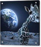Giraffe On Moon Acrylic Print