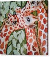 Giraffe Trio By Christine Lites Acrylic Print
