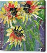Girasoles Acrylic Print
