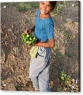 Girl With Vegetables.... Acrylic Print