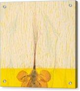 Give And Take Acrylic Print