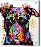 Give Love Pitbull Acrylic Print