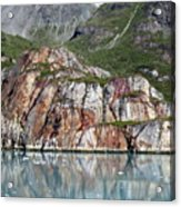 Glacier Bay 4 Photograph Acrylic Print