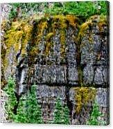 Glacier Np Moss Acrylic Print