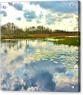 Glades Reflective 2 Acrylic Print