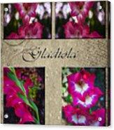 Gladiola Collage Acrylic Print
