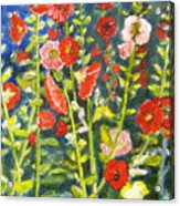 Gladiolus, 11x14, Oil, '07 Acrylic Print