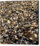 Glass Beach Acrylic Print