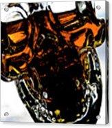 Glass Skull I Acrylic Print
