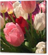Glazed Tulip Bouquet Acrylic Print