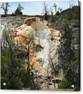Glen Spring At Mammoth Hot Springs Upper Terraces Acrylic Print