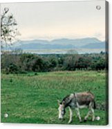 Glenbeigh Ireland Acrylic Print