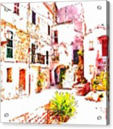 Glimpse Of The External Houses Of The Village Acrylic Print