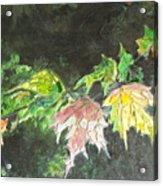 Glistening Fall Acrylic Print
