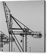 Global Containers Terminal Cargo Freight Cranes Bw Acrylic Print