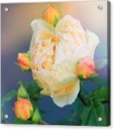 Gloria Acrylic Print