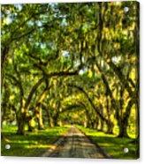 Glorious Entrance Tomotley Plantation South Carolina  Acrylic Print