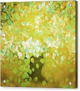 Glorious Flowers Acrylic Print