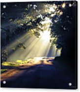 Glorious Morning Acrylic Print