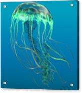 Glow Green Jellyfish Acrylic Print