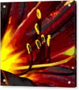 Glowing Flower Power Acrylic Print